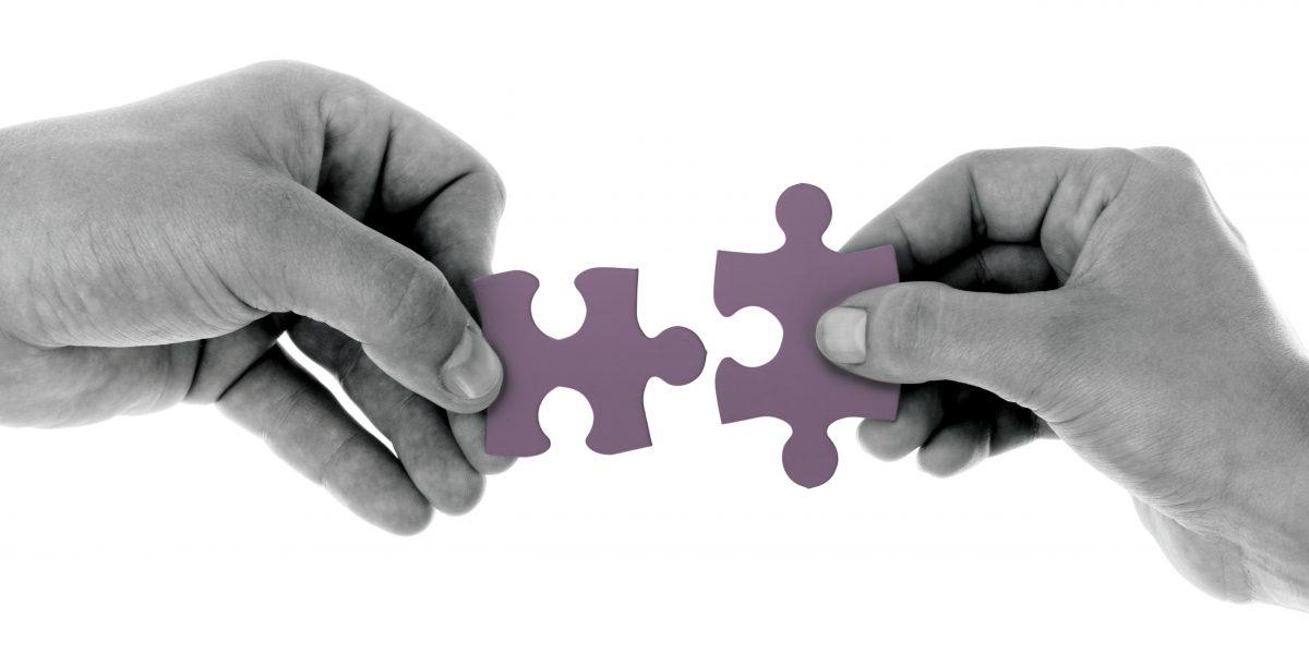 premium partnership CED